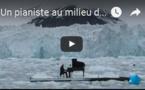 Un pianiste au milieu de la banquise pour sauver l'Arctique - GREENPEACE