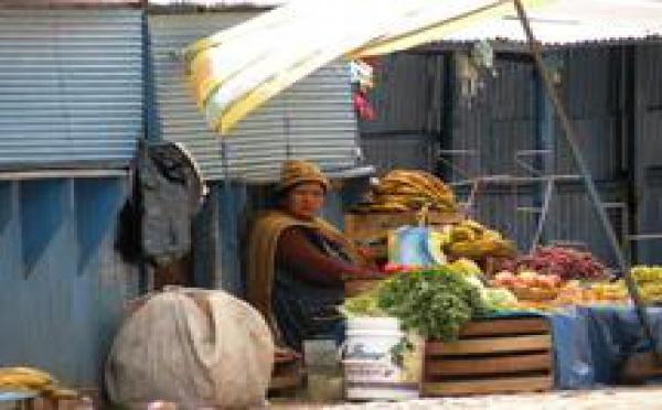Amérique du Sud : Consolidation de la croissance économique et des politiques sociales