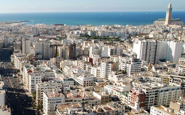 Lancement de la lutte contre les vecteurs de maladies à Casablanca
