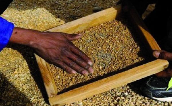 Afrique du Sud: ils risquent leur vie pour quelques diamants