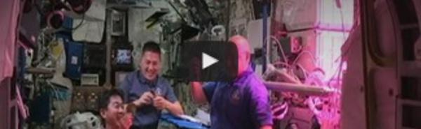 """Des astronautes ont mangé la première salade """"extraterrestre"""" !"""