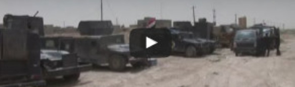 Le drapeau irakien flotte sur la mairie de Fallouja, bastion du groupe Etat islamique