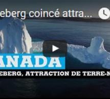 Un iceberg coincé attraction de terre neuve au CANADA