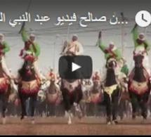 Festival Tbourida à Fkih Ben Salah