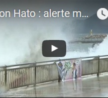 Typhon Hato : alerte maximum à Hong Kong