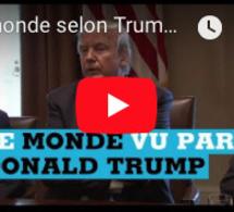 """Le monde selon Trump : Haïti n'est pas la première """"victime"""" du président américain"""