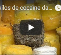 745 kilos de cocaïne dans des ananas !
