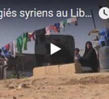 Réfugiés syriens au Liban : le retour au pays reste un dilemme