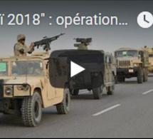 """""""Sinaï 2018"""" : opération militaire et politique"""