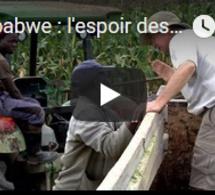 Zimbabwe : l'espoir des fermiers blancs