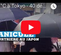 +37°C à Tokyo - 40 décès : Canicule meurtrière au JAPON
