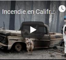 Incendie en Califronie : 600 personnes toujours portées disparues