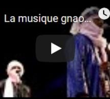 La musique gnaoua met le Maroc en transe