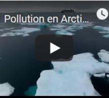 Pollution en Arctique : présence record de microplastiques dans la banquise
