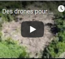 Des drones pour protéger la forêt amazonienne