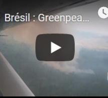 Brésil : Greenpeace dénonce l'inaction de Bolsonaro en Amazonie
