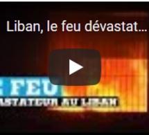Liban, le feu dévastateur