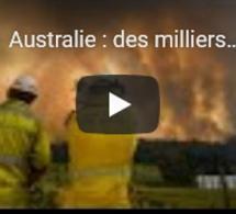 Australie : des milliers de pompiers mobilisés, les incendies se rapprochent de Sydney