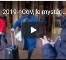 2019-nCoV, le mystérieux virus qui inquiète l'OMS fait un quatrième mort en Chine
