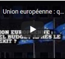 Union européenne : quel budget après le Brexit ?