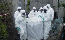 Lutte antiacridienne : Les pesticides périmés menacent l'environnement