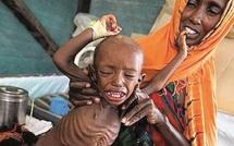 Avertissement onusien : La famine devrait frapper tout le sud de la Somalie