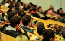 De l'enseignement supérieur dans le monde arabe