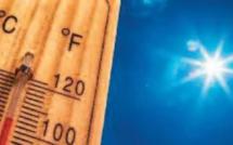 2020, une année particulièrement chaude