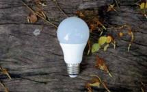Pour un éclairage respectueux de l' environnement