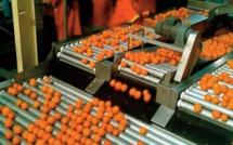 Les industries agricoles et alimentaires ont prouvé leur résilience