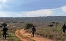 Au Kenya, techniques commando dans le combat contre les braconniers